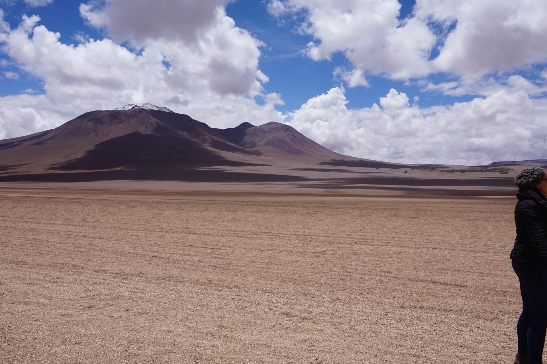 チリ ボリビア ウユニ旅行 2泊3日ツアー ダリ砂漠2