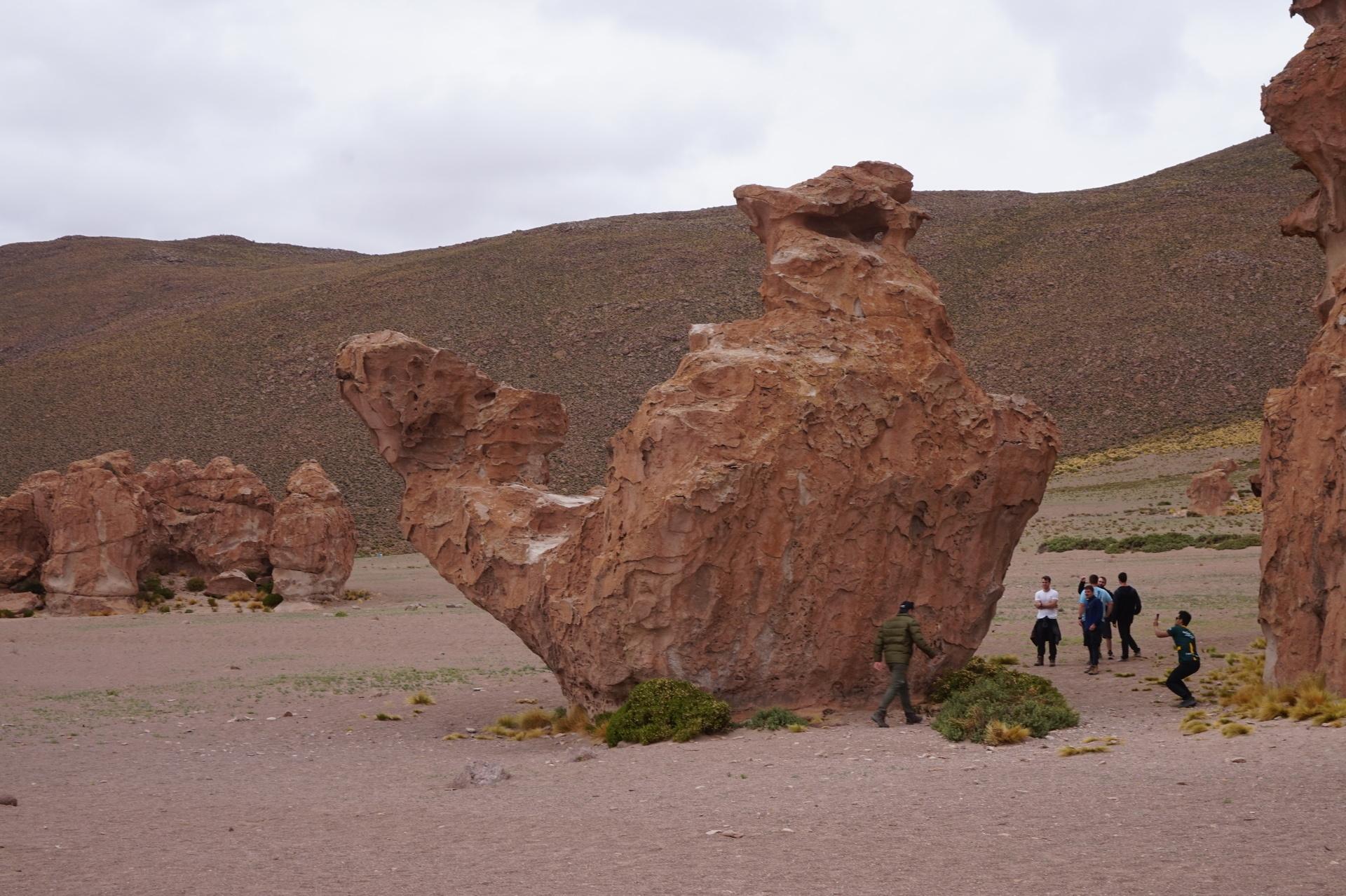 チリ ボリビア ウユニ旅行 2泊3日ツアー ラクダ岩