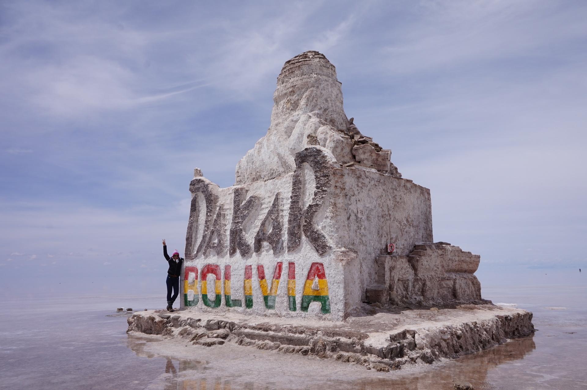 チリ ボリビア ウユニ旅行 2泊3日ツアー 塩の石像